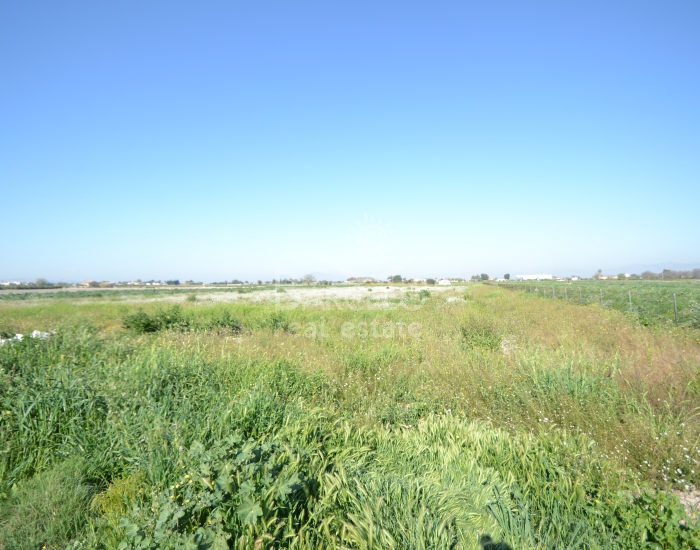 Plot  - Investments - San Fulgencio - San Fulgencio